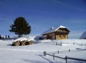 Pauschale: Skifahren auf über 1800 Meter im Februar