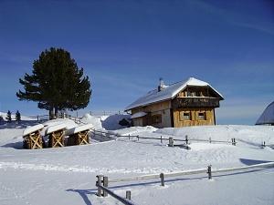 Pauschale: Weiße Wochen im Jänner am Falkert
